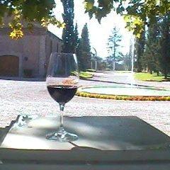 malbec vinos de ayerbe